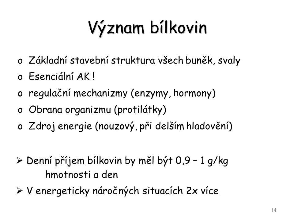 Význam bílkovin Základní stavební struktura všech buněk, svaly