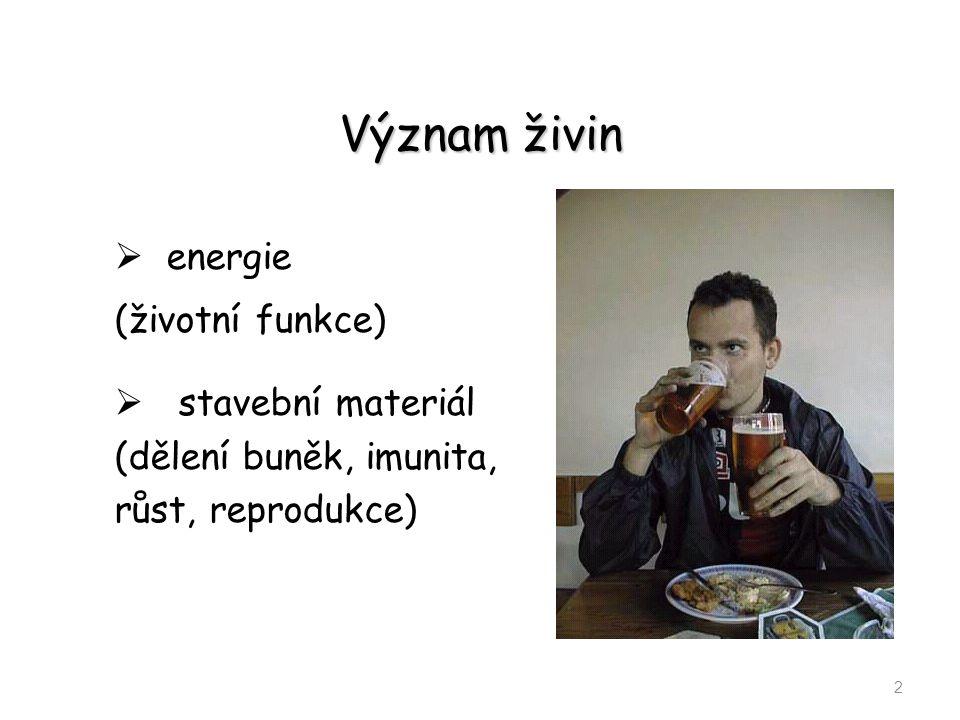 Význam živin energie (životní funkce)