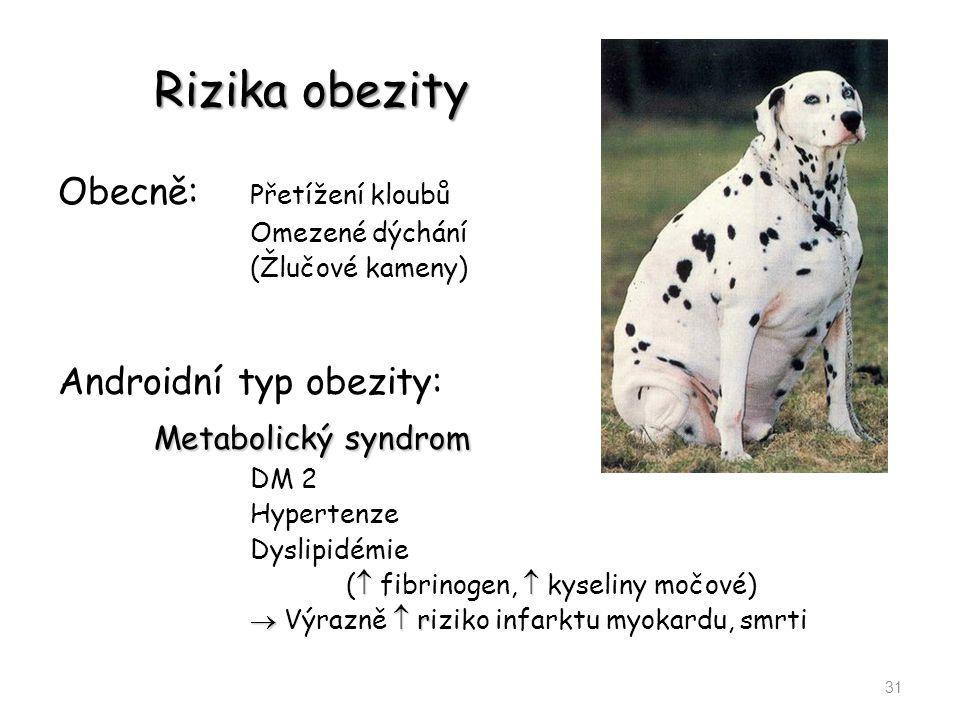 Rizika obezity Metabolický syndrom Obecně: Přetížení kloubů