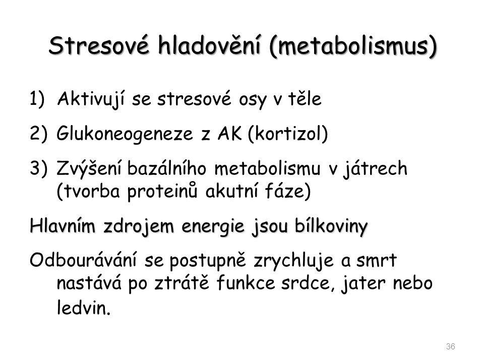 Stresové hladovění (metabolismus)