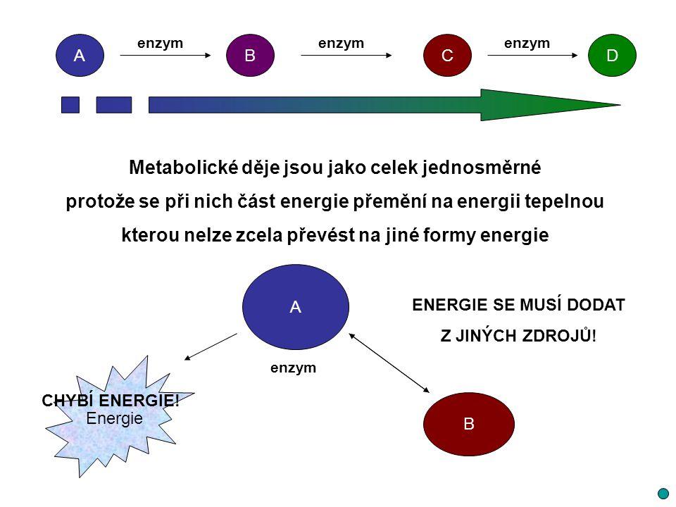 Metabolické děje jsou jako celek jednosměrné