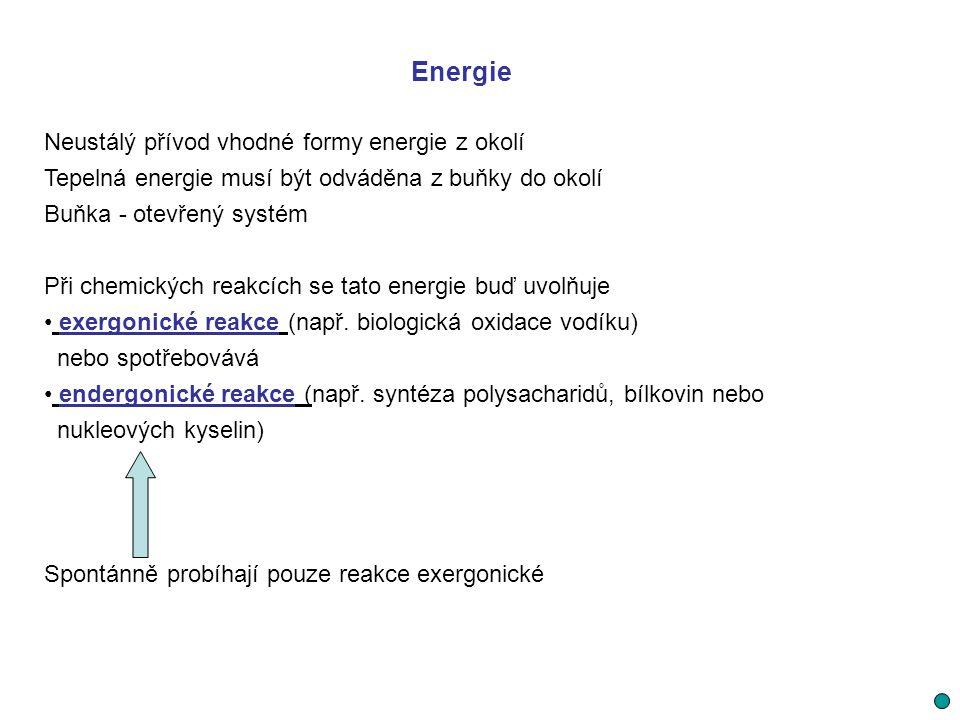 Energie Neustálý přívod vhodné formy energie z okolí