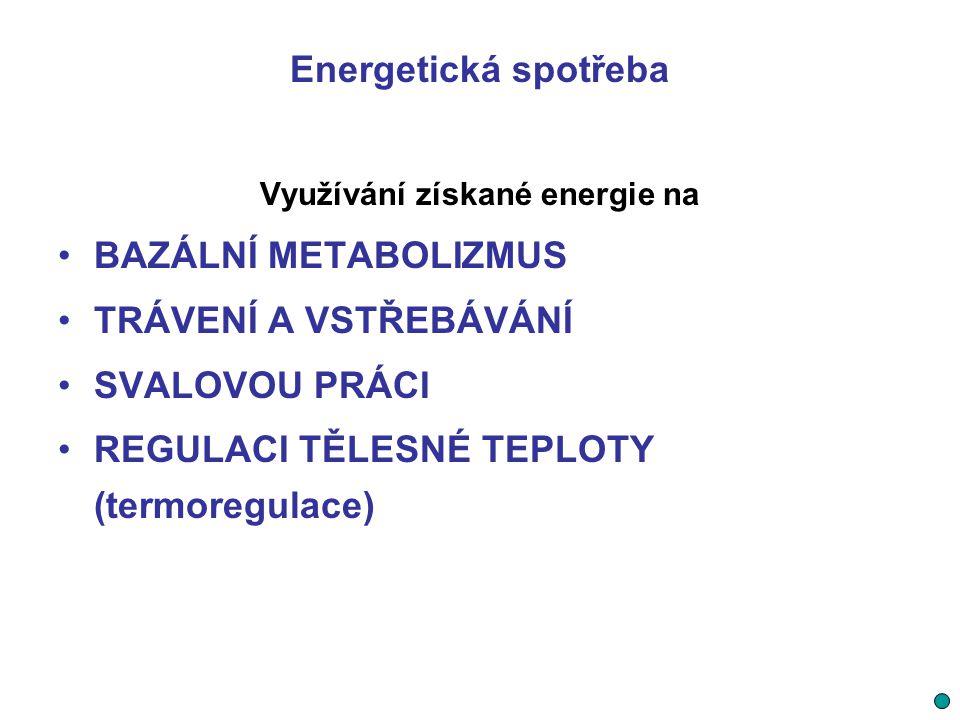 Využívání získané energie na