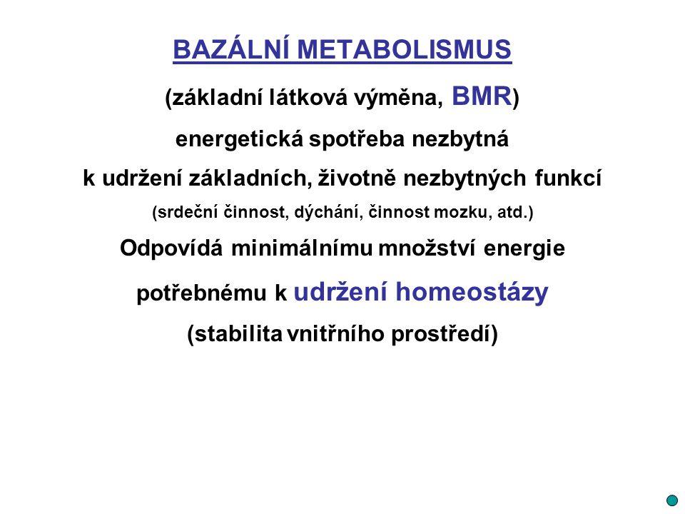 BAZÁLNÍ METABOLISMUS (základní látková výměna, BMR)