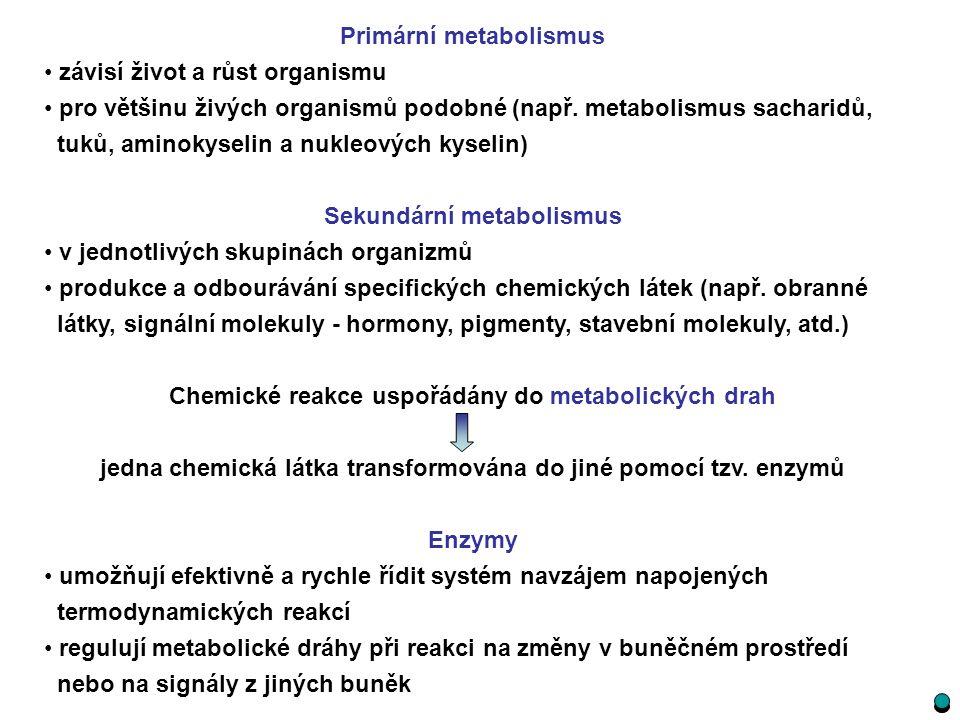 Primární metabolismus závisí život a růst organismu