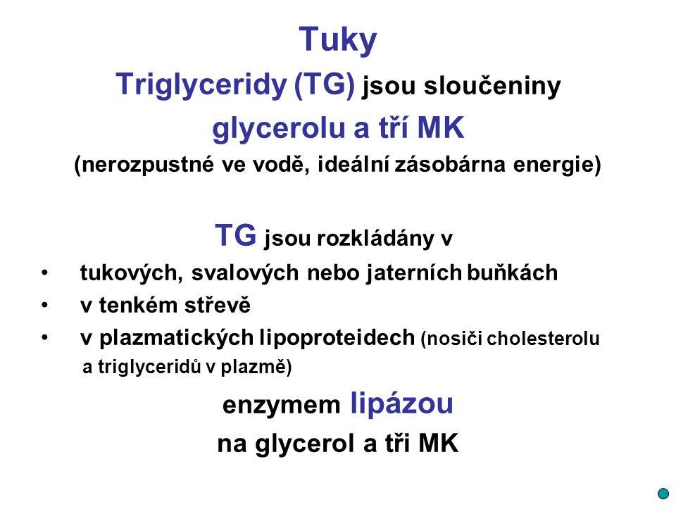 Tuky Triglyceridy (TG) jsou sloučeniny glycerolu a tří MK