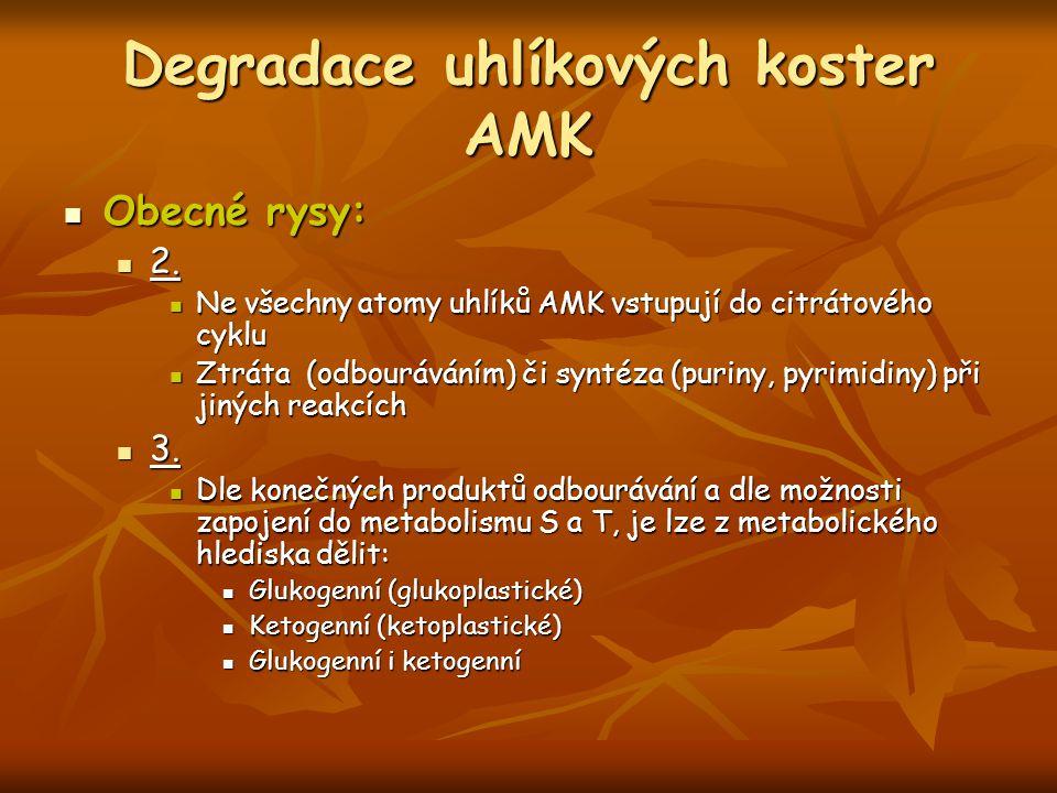 Degradace uhlíkových koster AMK