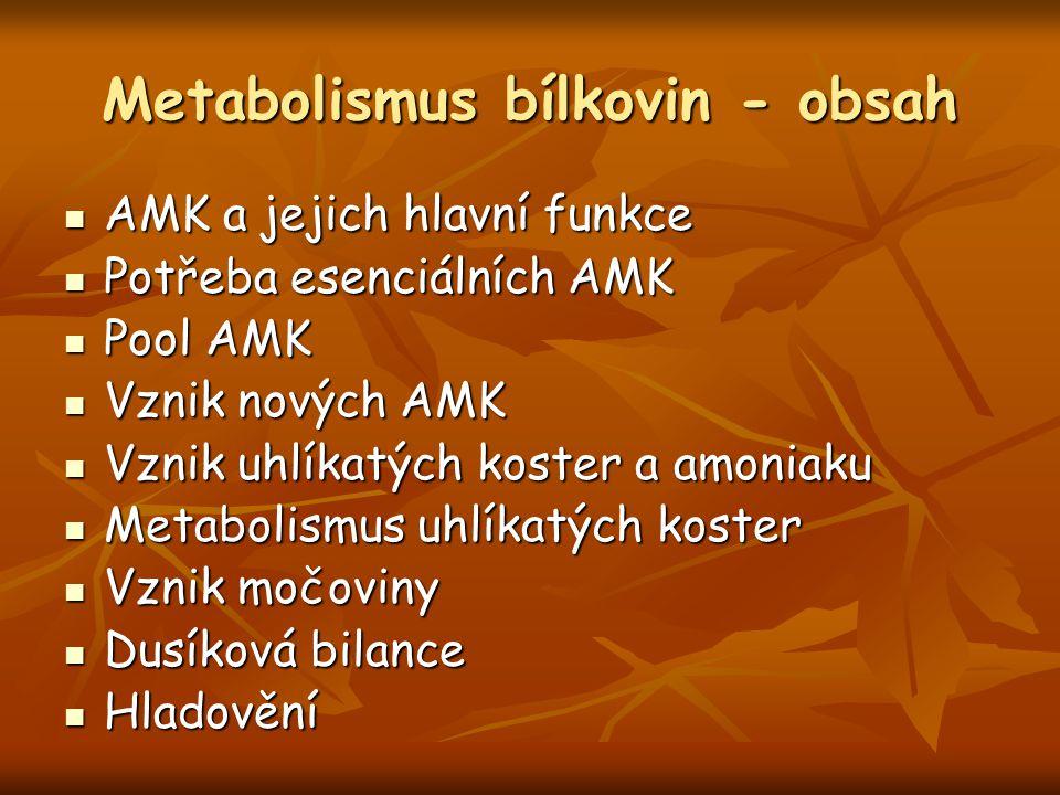 Metabolismus bílkovin - obsah