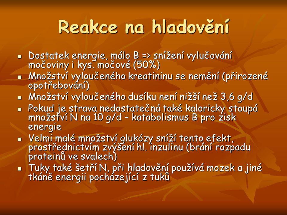 Reakce na hladovění Dostatek energie, málo B => snížení vylučování močoviny i kys. močové (50%)