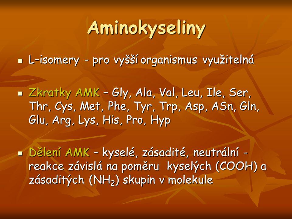 Aminokyseliny L–isomery - pro vyšší organismus využitelná