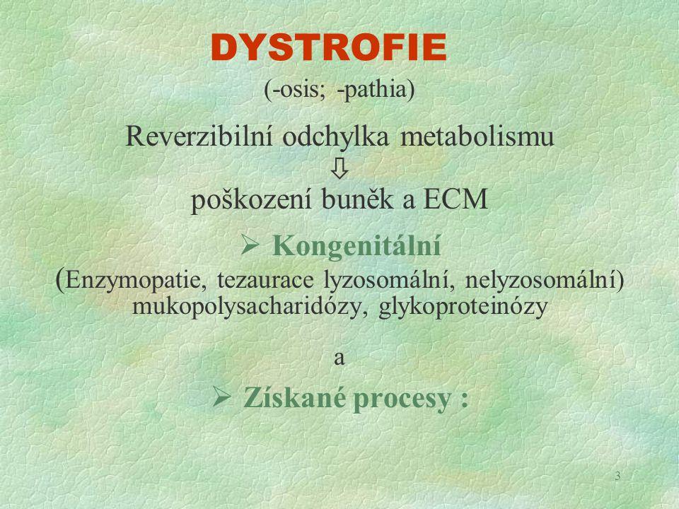DYSTROFIE Reverzibilní odchylka metabolismu  poškození buněk a ECM