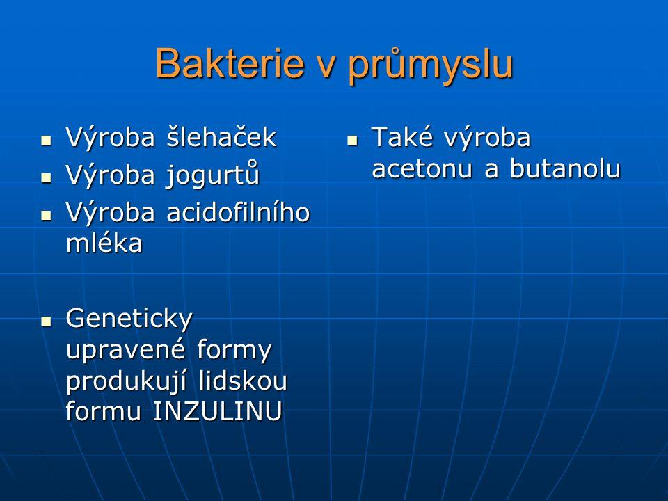 Bakterie v průmyslu Výroba šlehaček Výroba jogurtů