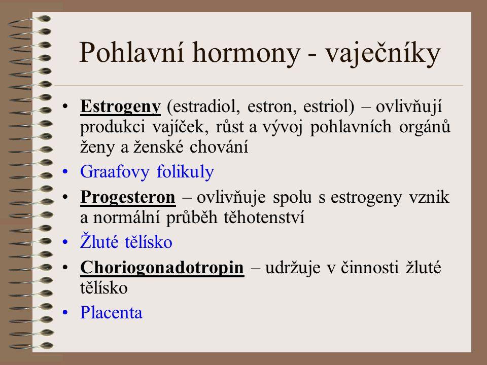 Pohlavní hormony - vaječníky