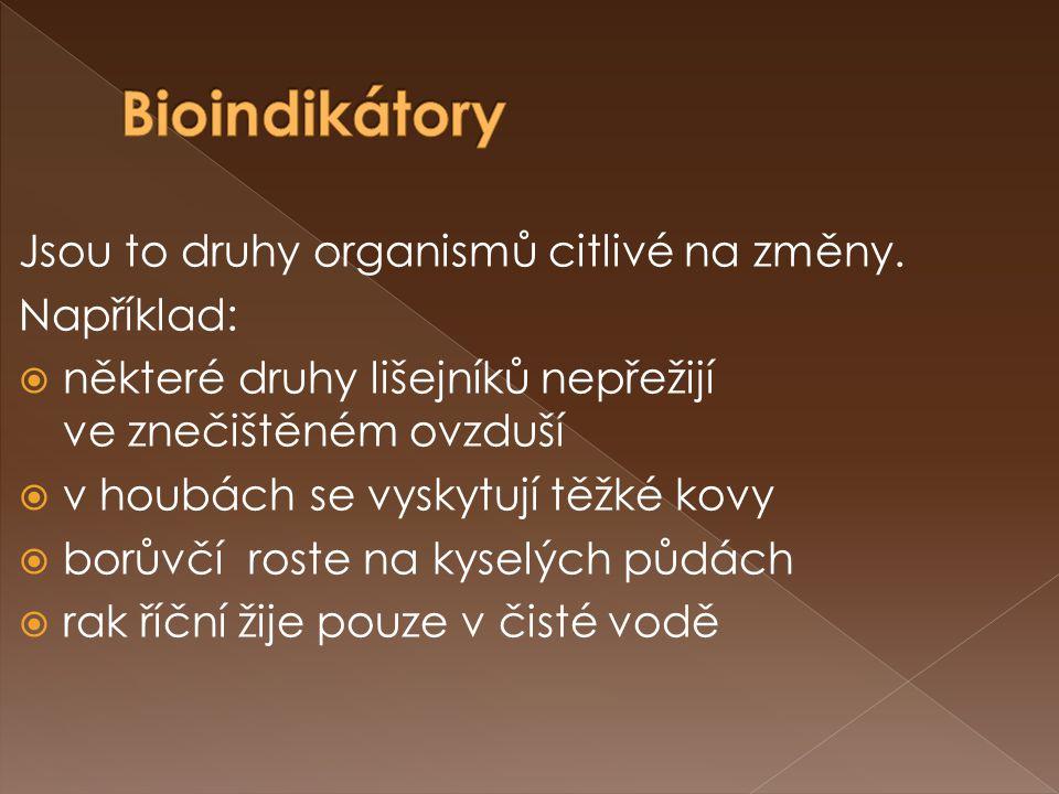 Bioindikátory Jsou to druhy organismů citlivé na změny. Například: