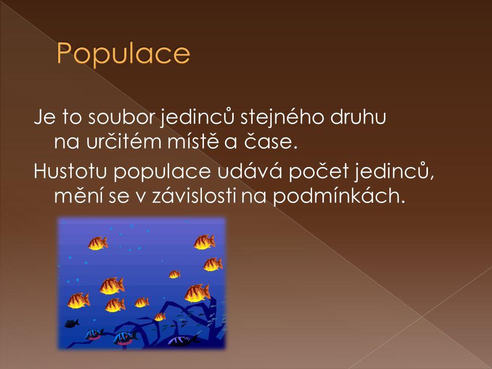 Populace Je to soubor jedinců stejného druhu na určitém místě a čase.