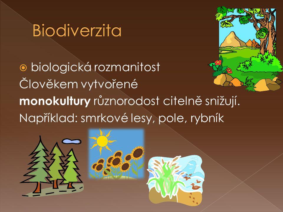 Biodiverzita biologická rozmanitost Člověkem vytvořené