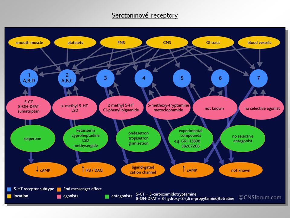Serotoninové receptory