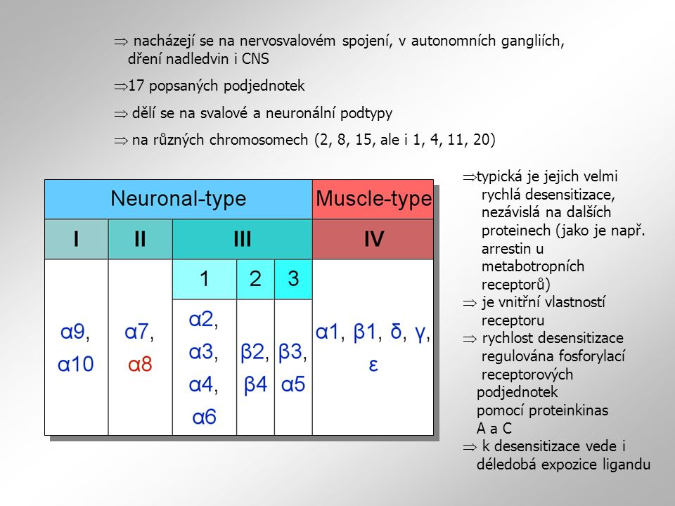  nacházejí se na nervosvalovém spojení, v autonomních gangliích, dření nadledvin i CNS