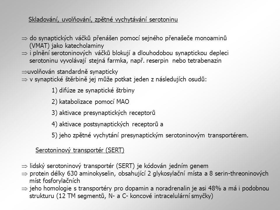 Skladování, uvolňování, zpětné vychytávání serotoninu