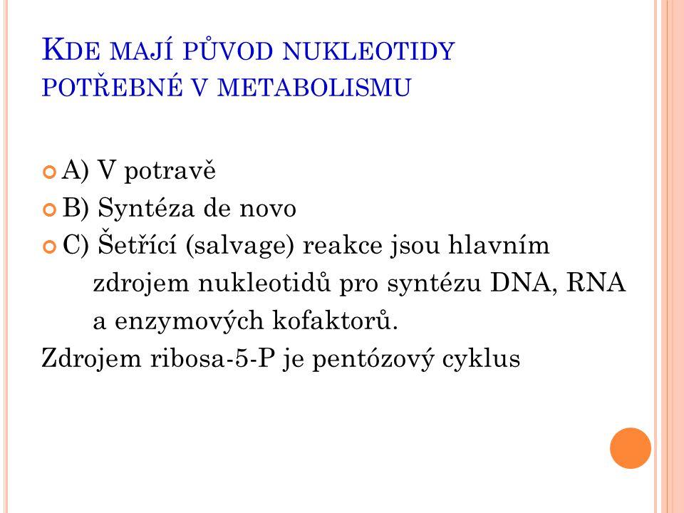 Kde mají původ nukleotidy potřebné v metabolismu