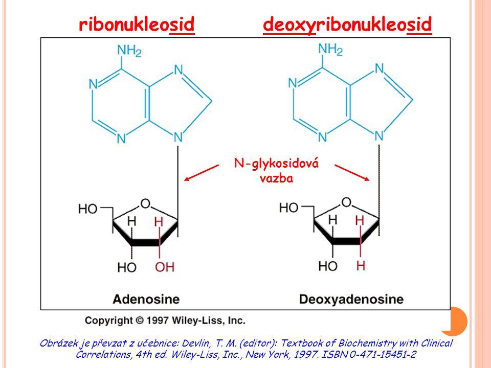 ribonukleosid deoxyribonukleosid