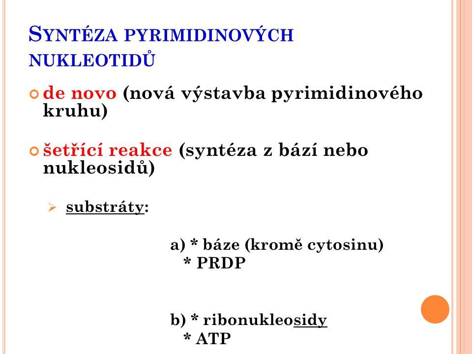 Syntéza pyrimidinových nukleotidů