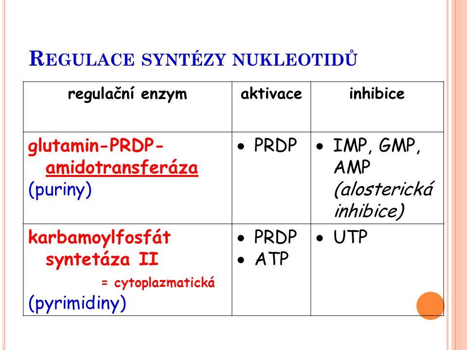 Regulace syntézy nukleotidů
