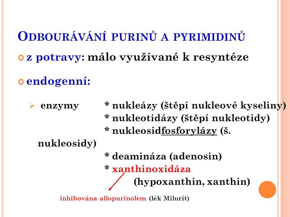 Odbourávání purinů a pyrimidinů