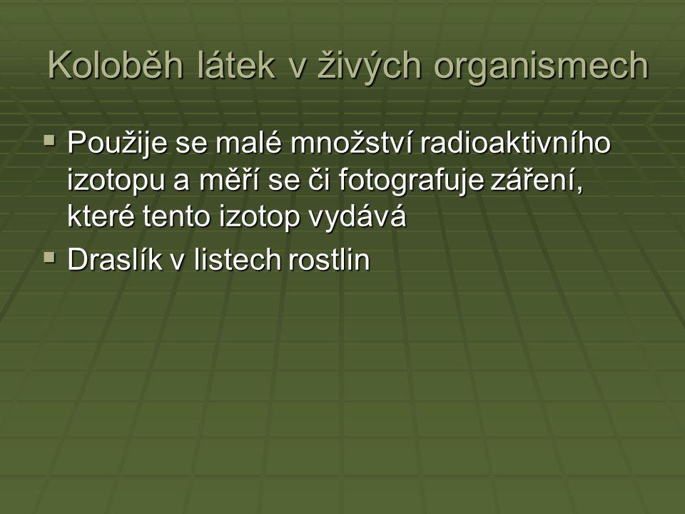 Koloběh látek v živých organismech