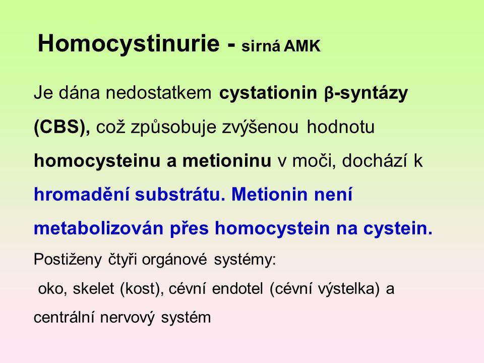 Homocystinurie - sirná AMK