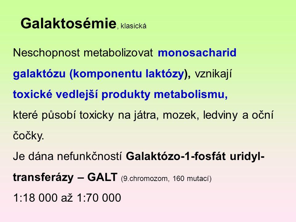 Galaktosémie, klasická
