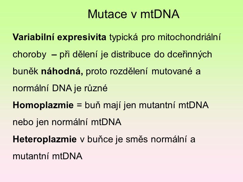 Mutace v mtDNA