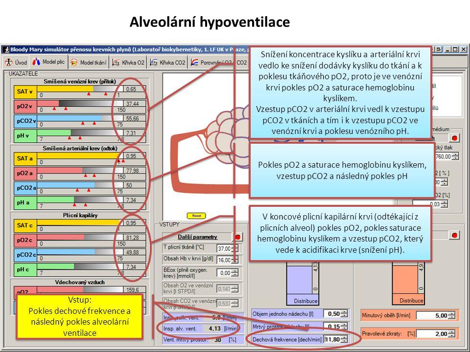 Pokles dechové frekvence a následný pokles alveolární ventilace