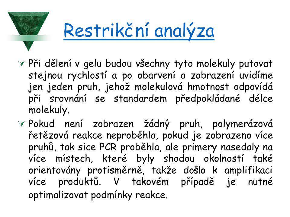 Restrikční analýza