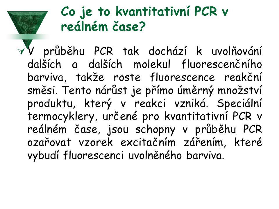 Co je to kvantitativní PCR v reálném čase