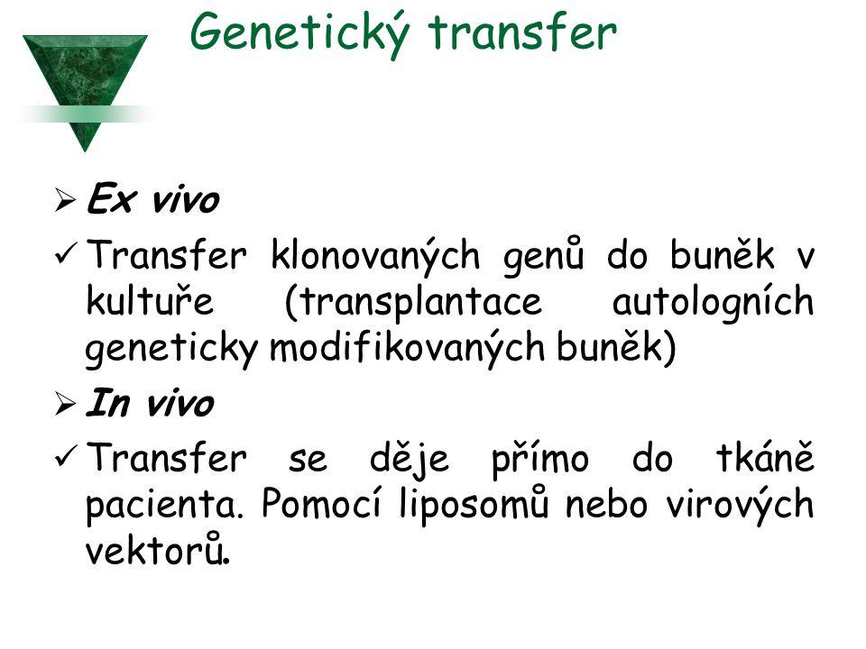 Genetický transfer Ex vivo