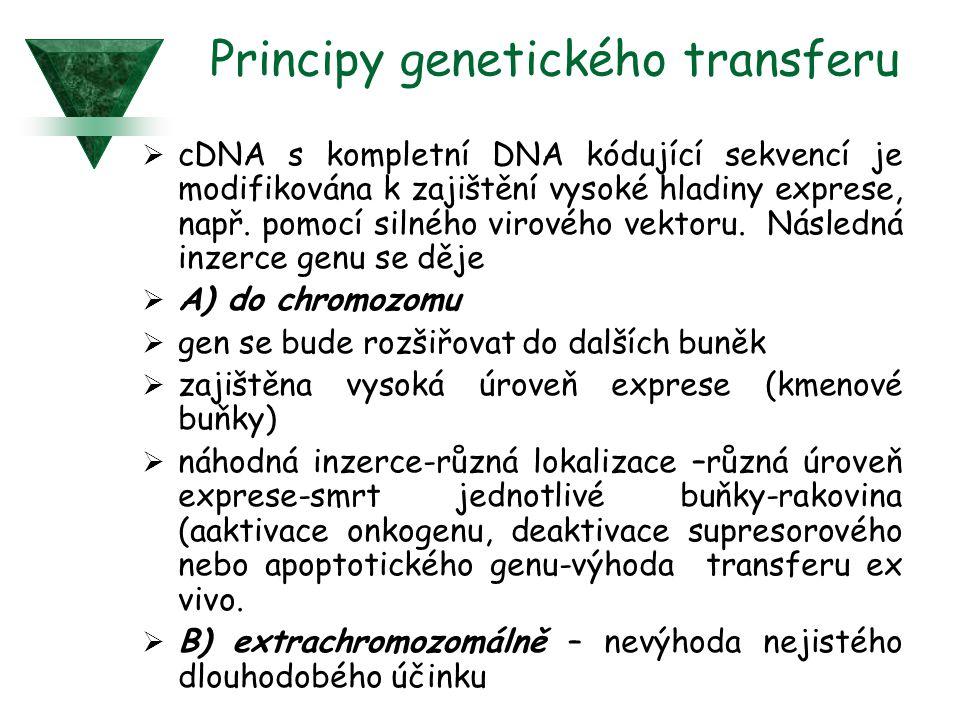 Principy genetického transferu