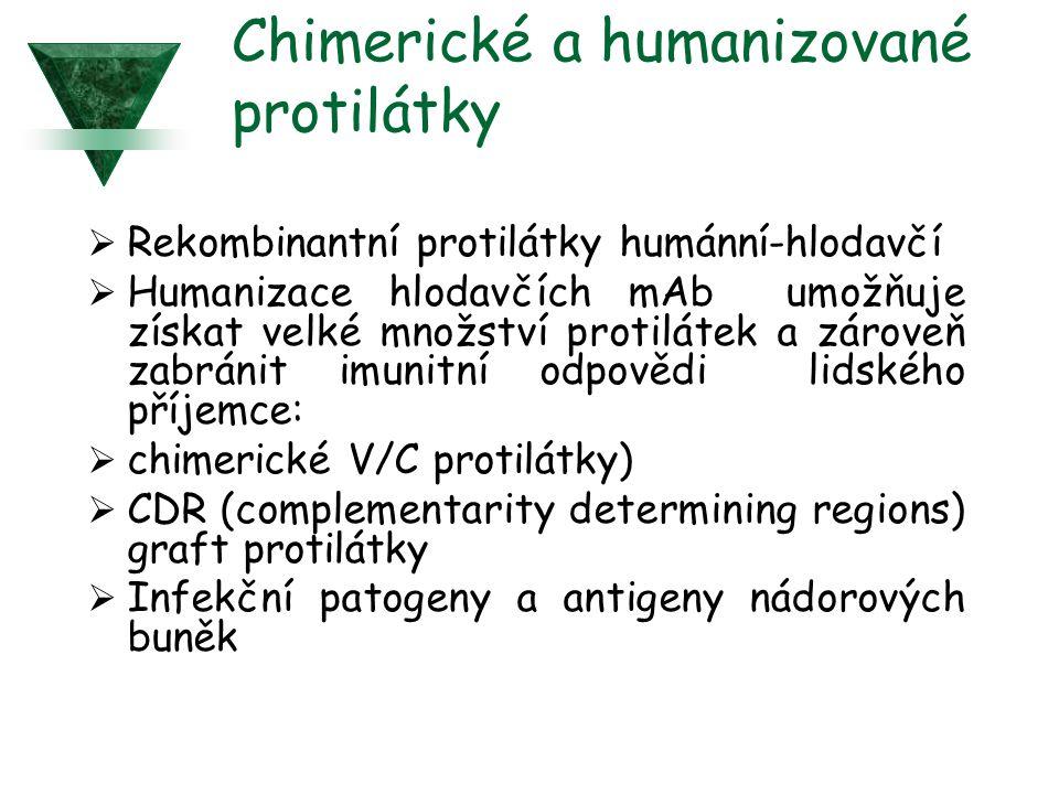 Chimerické a humanizované protilátky