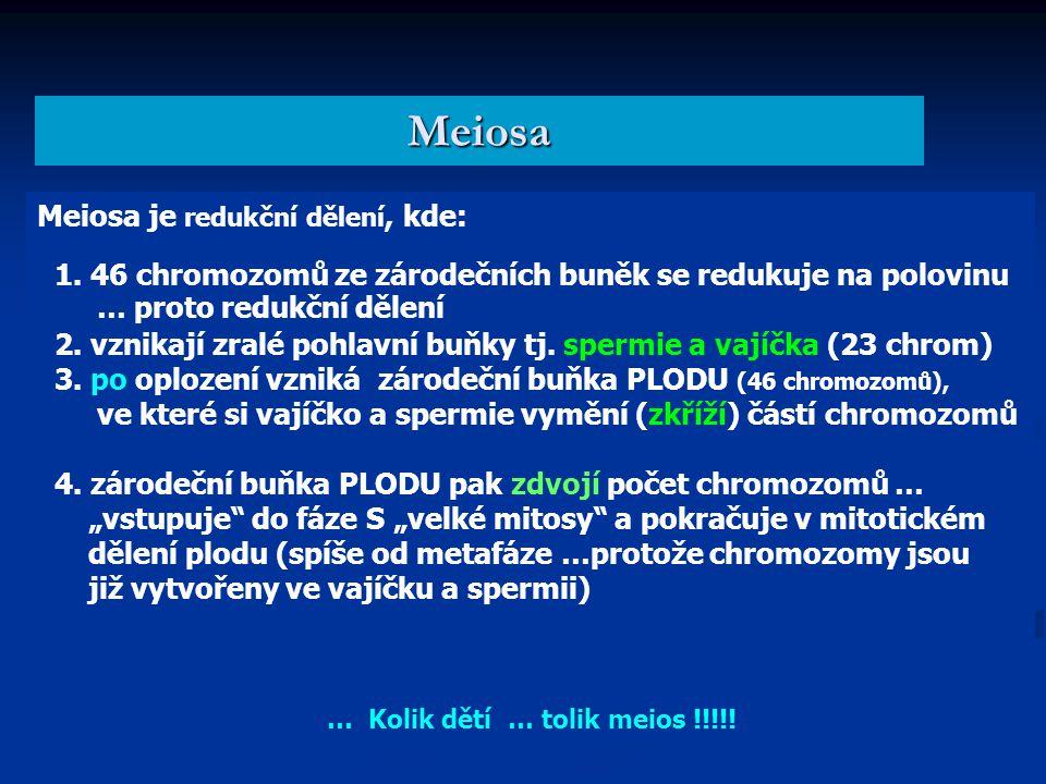 Meiosa Meiosa je redukční dělení, kde: