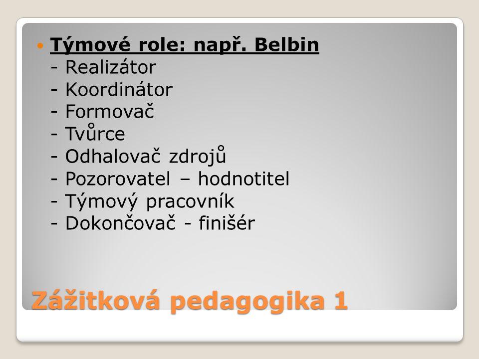 Týmové role: např. Belbin - Realizátor - Koordinátor - Formovač - Tvůrce - Odhalovač zdrojů - Pozorovatel – hodnotitel - Týmový pracovník - Dokončovač - finišér