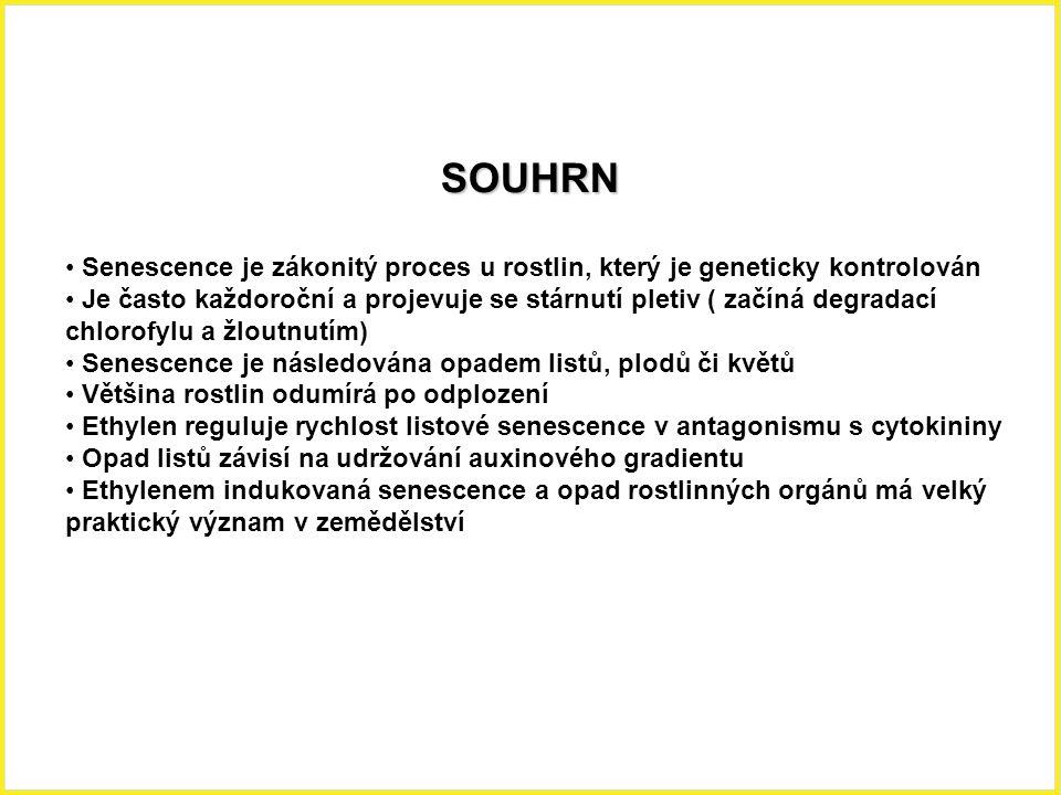 SOUHRN Senescence je zákonitý proces u rostlin, který je geneticky kontrolován.