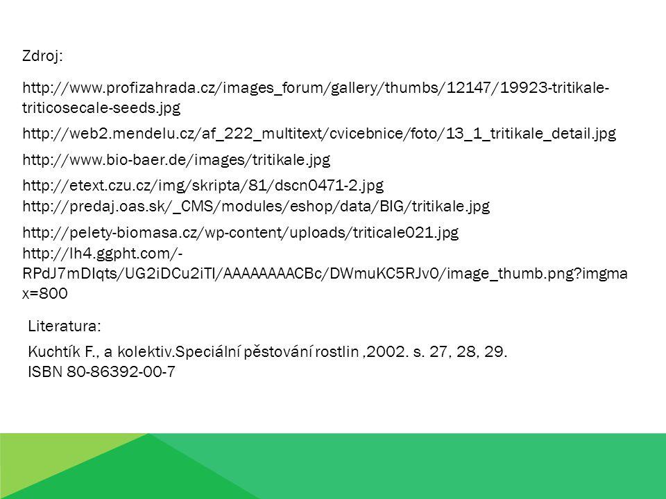 Zdroj: http://www.profizahrada.cz/images_forum/gallery/thumbs/12147/19923-tritikale-triticosecale-seeds.jpg.