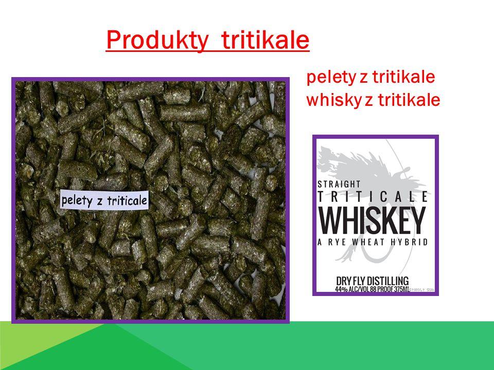 Produkty tritikale pelety z tritikale whisky z tritikale