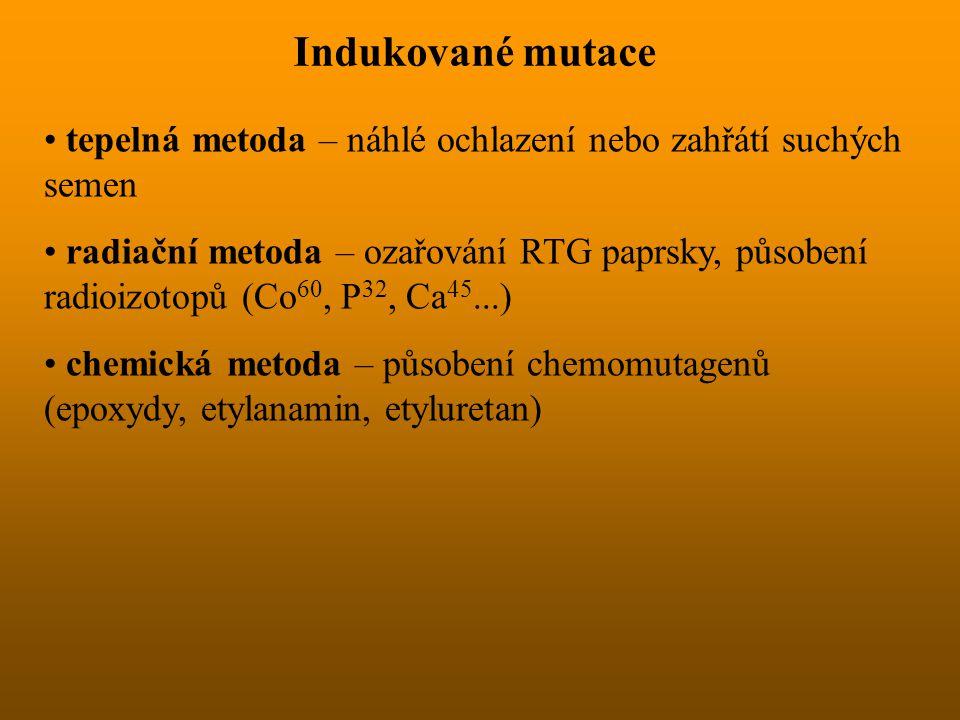 Indukované mutace tepelná metoda – náhlé ochlazení nebo zahřátí suchých semen.
