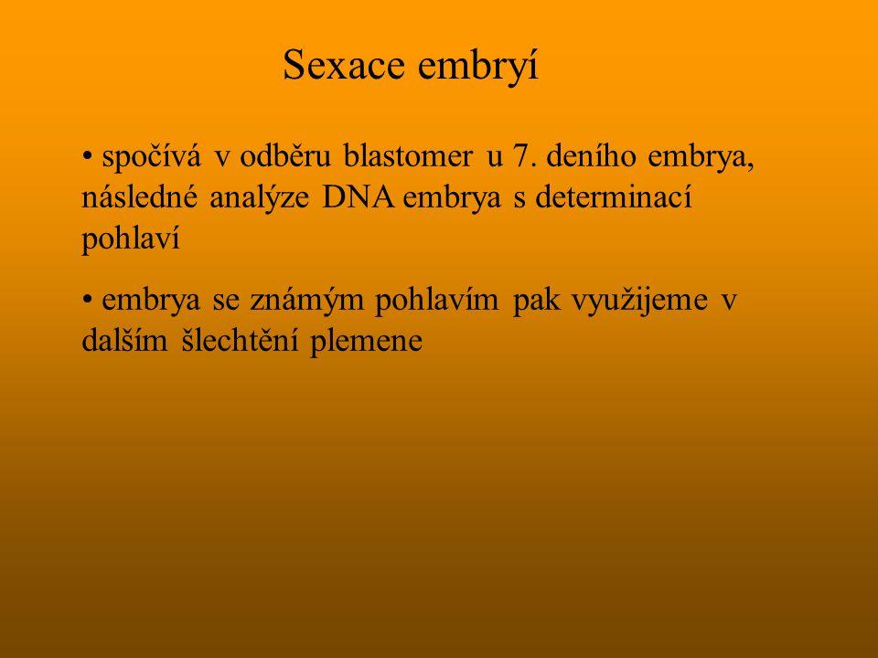 Sexace embryí spočívá v odběru blastomer u 7. deního embrya, následné analýze DNA embrya s determinací pohlaví.