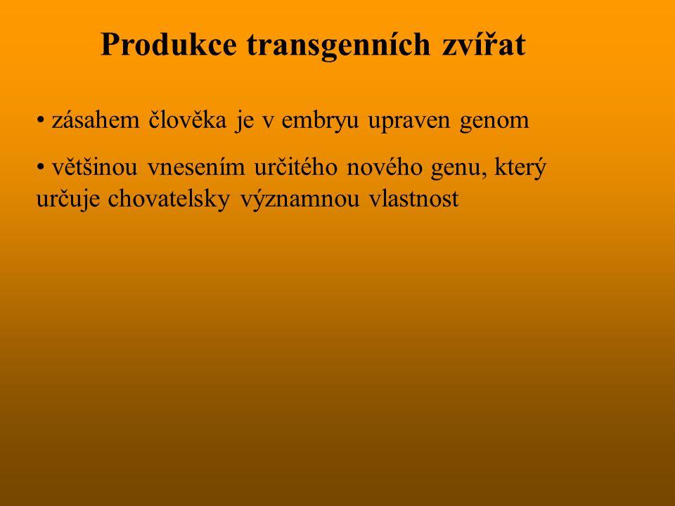 Produkce transgenních zvířat