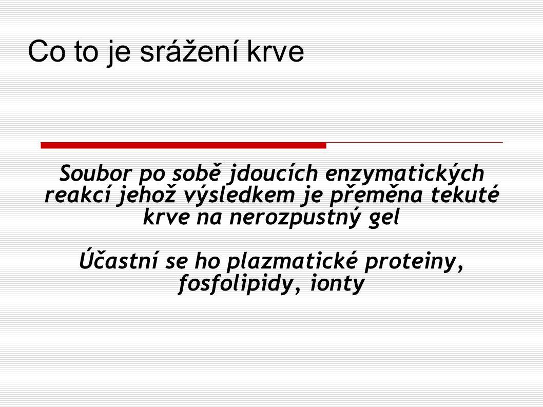 Účastní se ho plazmatické proteiny, fosfolipidy, ionty