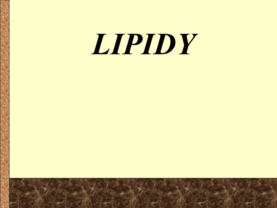 LIPIDY 1