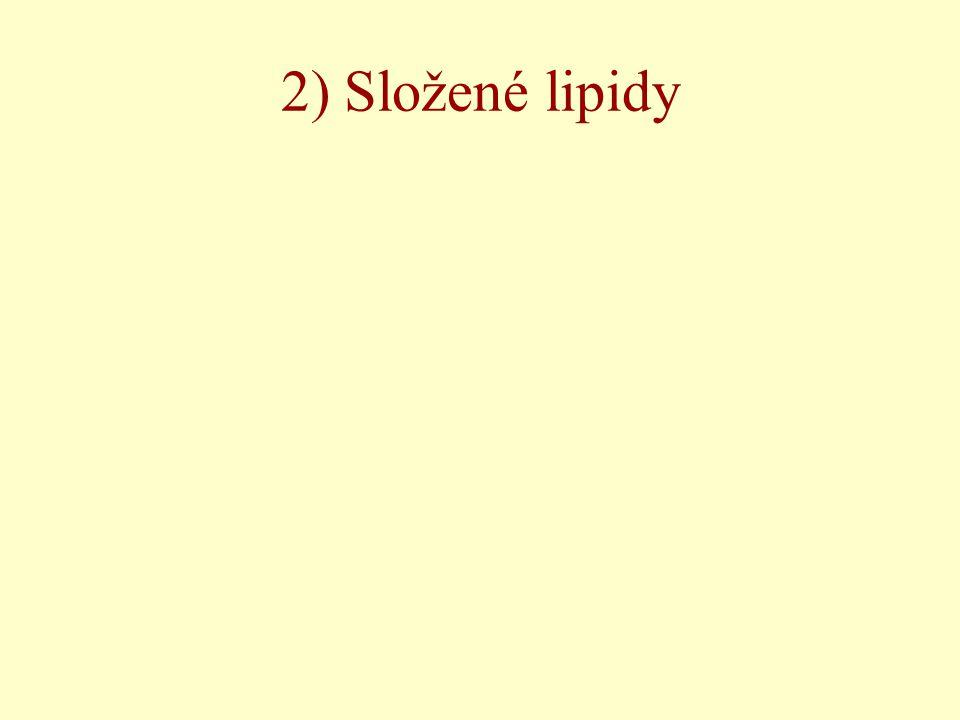 2) Složené lipidy