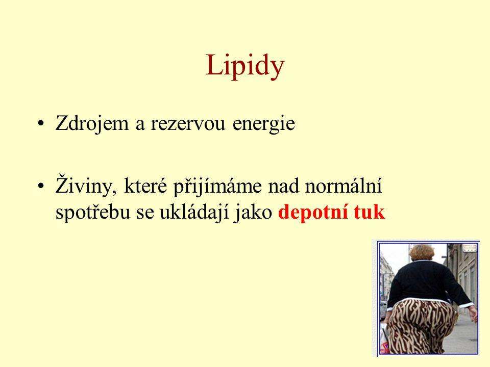 Lipidy Zdrojem a rezervou energie